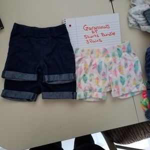 Garanimals 2T shorts bundle